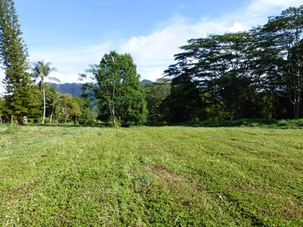 Beautiful and Private 9.06 Acres of Vacant Land