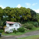 Two Homes in a Tropical Setting in Kalaheo